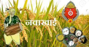 कृषि संस्कृति और ऋषि संस्कृति  आधारित त्यौहार : नवाखाई