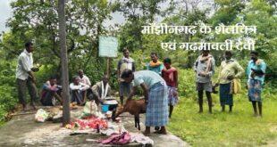 माँझीनगढ़ के शैलचित्र एवं गढ़मावली देवी जातरा